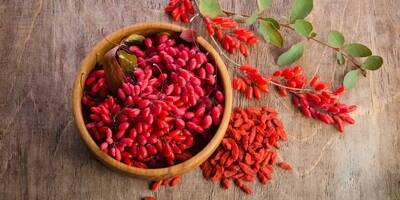 Goji berries | The 4 Major Benefits Highlighted by Research