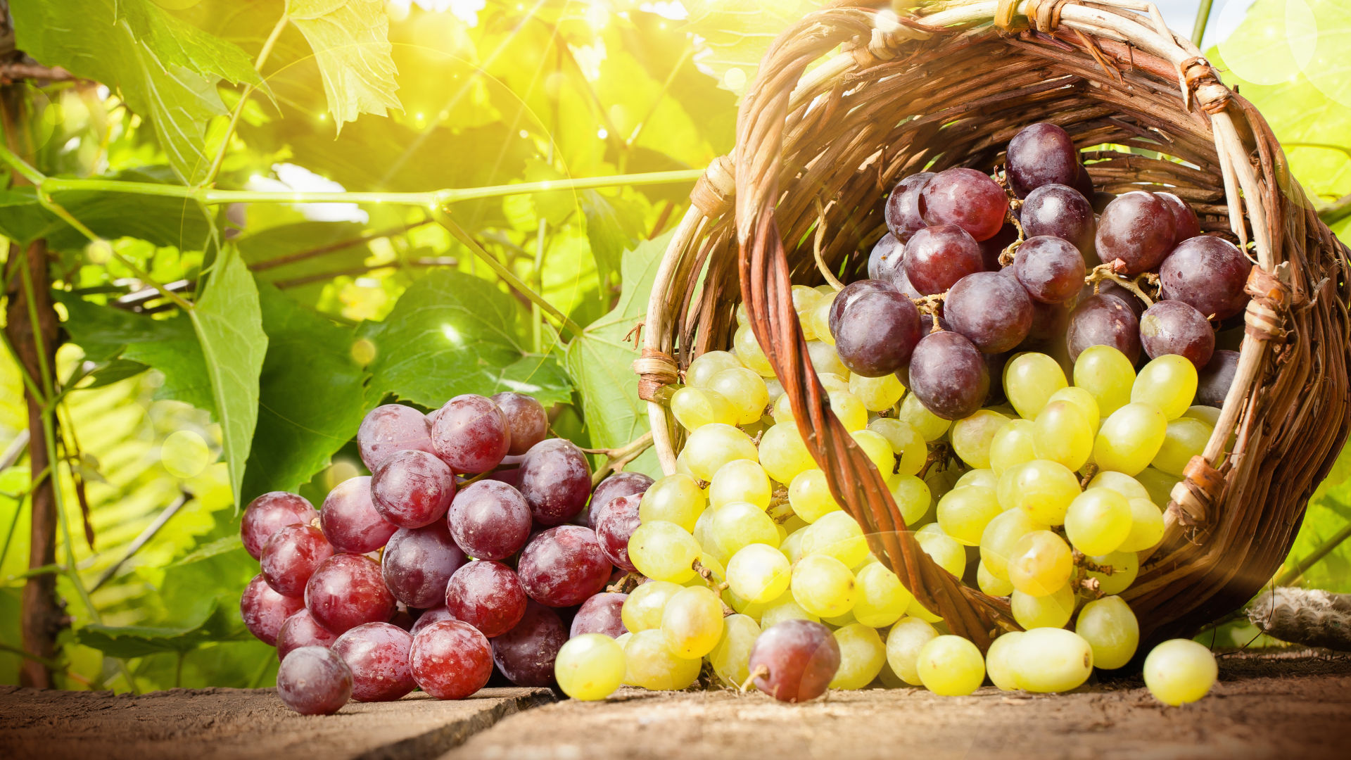 Grapes: a mix of health and beauty